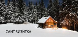 сайт визитка в омске